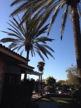 Bei Neckermann Reisen findet man nicht nur Angebote für Urlaub unter Palmen.
